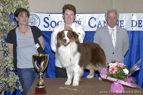 meilleur chien de l'exposition canine de La Roche sur Yon 2013