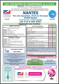 Feuille CHF SCC 2017