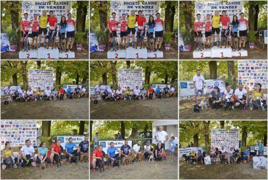 GPF Cani-cross SCC 2018 Les podiums