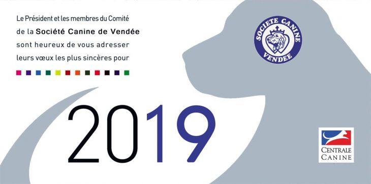 Voeux 2019 SC Vendée