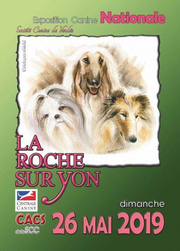 exposition La Roche Sur Yon 2019