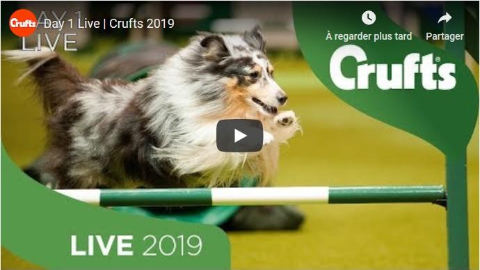 Crufts 20190307-1