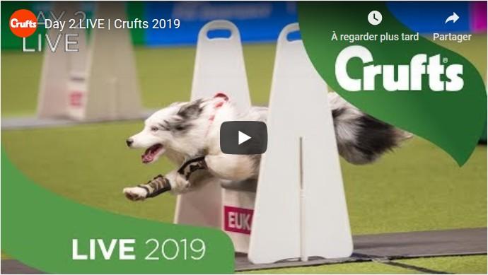 Crufts 20190308-2