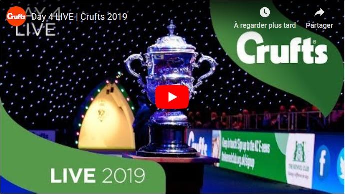 Crufts 20190310-4