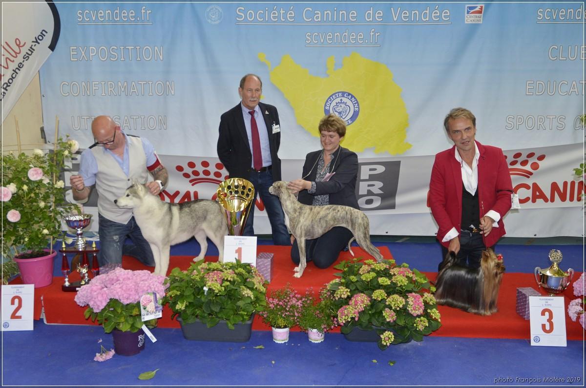 Podium de l'expo, avec M. Jean-Louis Escoffier, juge