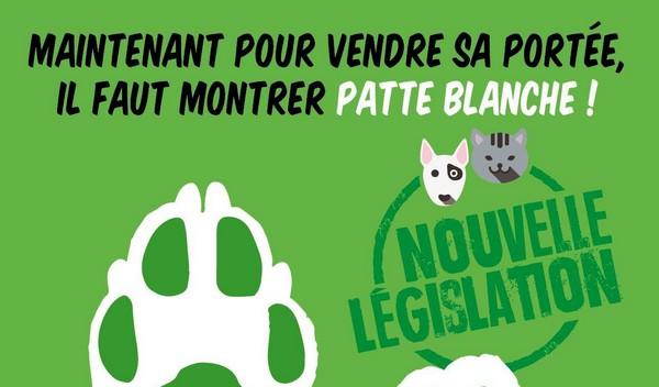 affiche législation ventes chiens 2016