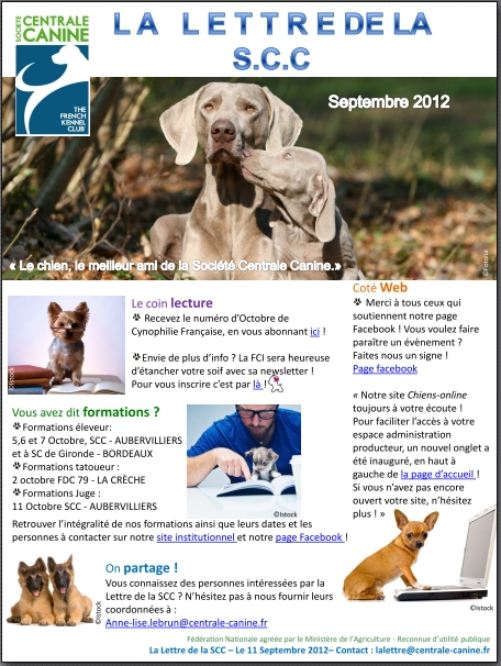centrale canine online